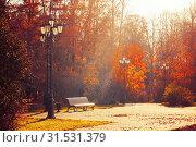 Купить «Осенний пейзаж. Autumn September morning landscape. Bench at the autumn alley under colorful deciduous autumn trees. Sunny autumn park scene», фото № 31531379, снято 17 октября 2018 г. (c) Зезелина Марина / Фотобанк Лори