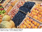 Купить «Assortment of fruits at market», фото № 31622527, снято 10 июля 2019 г. (c) Jan Jack Russo Media / Фотобанк Лори