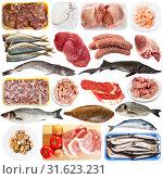 Купить «Raw meat and seafood products», фото № 31623231, снято 21 июля 2019 г. (c) Яков Филимонов / Фотобанк Лори