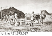 Купить «Method of crushing sugar cane in India in the 19th century. After a work by J. Macfarlane. From a contemporary print c. 1935.», фото № 31673087, снято 22 мая 2019 г. (c) age Fotostock / Фотобанк Лори