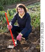 Young woman working in field of onion. Стоковое фото, фотограф Яков Филимонов / Фотобанк Лори
