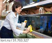 Купить «Woman washing glass of aquariums», фото № 31703327, снято 27 февраля 2019 г. (c) Яков Филимонов / Фотобанк Лори