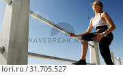Купить «Beautiful Caucasian woman exercising on railing at beach 4k», видеоролик № 31705527, снято 24 января 2019 г. (c) Wavebreak Media / Фотобанк Лори