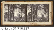 Yo Semite Falls. 2630 ft, Carleton Watkins (American, 1829 - 1916), July 1861, Stereograph, glass, 6 x 13.2 cm (2 3,8 x 5 3,16 in.) (2018 год). Редакционное фото, фотограф © Liszt Collection / age Fotostock / Фотобанк Лори