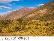 Купить «Andes near Las Lenas», фото № 31798951, снято 9 февраля 2017 г. (c) Яков Филимонов / Фотобанк Лори