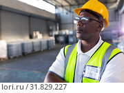 Купить «Male staff in hardhat and reflective jacket standing with arms crossed in warehouse», фото № 31829227, снято 23 марта 2019 г. (c) Wavebreak Media / Фотобанк Лори