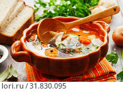 Fish sterlet soup. Стоковое фото, фотограф Надежда Мишкова / Фотобанк Лори
