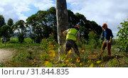 Купить «Lumberjacks cutting down tree in the forest 4k», видеоролик № 31844835, снято 13 августа 2018 г. (c) Wavebreak Media / Фотобанк Лори