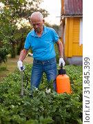 Купить «Man works with garden spray in the yard», фото № 31845399, снято 19 октября 2019 г. (c) Яков Филимонов / Фотобанк Лори