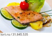 Купить «Tasty fried trout fillets served with cherry tomatoes, potatoes,onion and greens», фото № 31845535, снято 21 сентября 2019 г. (c) Яков Филимонов / Фотобанк Лори