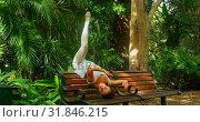 Купить «Young ballerina dancer practicing dance on the bench in the park 4k», видеоролик № 31846215, снято 26 сентября 2018 г. (c) Wavebreak Media / Фотобанк Лори
