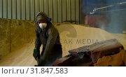 Купить «Worker working in foundry workshop 4k», видеоролик № 31847583, снято 27 сентября 2018 г. (c) Wavebreak Media / Фотобанк Лори