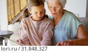 Front view of Caucasian Grandmother and granddaughter looking at photo album 4k. Стоковое видео, агентство Wavebreak Media / Фотобанк Лори