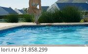 Купить «Front view of young mixed-race woman jumping in swimming pool on a sunny day 4k», видеоролик № 31858299, снято 7 ноября 2018 г. (c) Wavebreak Media / Фотобанк Лори