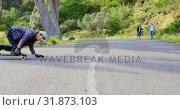 Купить «Front view of cool young caucasian man doing skateboard trick on downhill at countryside road 4k», видеоролик № 31873103, снято 16 октября 2018 г. (c) Wavebreak Media / Фотобанк Лори