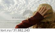 Купить «Rear view of young blonde woman holding hat and looking at sea on the beach 4k», видеоролик № 31882243, снято 14 ноября 2018 г. (c) Wavebreak Media / Фотобанк Лори