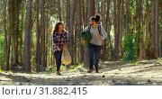Купить «Happy young couple having fun in the forest 4k», видеоролик № 31882415, снято 12 октября 2018 г. (c) Wavebreak Media / Фотобанк Лори