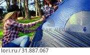 Купить «Friends setting up tent in the forest on a sunny day 4k», видеоролик № 31887067, снято 12 октября 2018 г. (c) Wavebreak Media / Фотобанк Лори