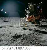 Купить «EARTH, THE MOON, Sea of Tranquility - 20 July 1969 - Astronaut Edwin E Aldrin Jnr, lunar module pilot, is photographed during the Apollo 11 extravehicular...», фото № 31897355, снято 11 декабря 2019 г. (c) age Fotostock / Фотобанк Лори