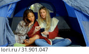Women discussing on mobile phone in camping tent 4k. Стоковое видео, агентство Wavebreak Media / Фотобанк Лори