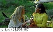 Купить «Happy women toasting beer bottle in the forest 4k», видеоролик № 31901187, снято 12 октября 2018 г. (c) Wavebreak Media / Фотобанк Лори