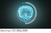Купить «3D illustration of human brain», видеоролик № 31902099, снято 16 января 2019 г. (c) Wavebreak Media / Фотобанк Лори