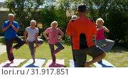 Rear view of Caucasian male trainer training senior people in performing yoga at the garden of n 4k. Стоковое видео, агентство Wavebreak Media / Фотобанк Лори