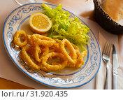 Купить «Calamari in a batter of tempera flour and fresh salad with lemon», фото № 31920435, снято 23 октября 2019 г. (c) Яков Филимонов / Фотобанк Лори