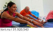 Купить «Side view of Caucasian female trainer training senior man in exercising at fitness studio 4k», видеоролик № 31920543, снято 22 ноября 2018 г. (c) Wavebreak Media / Фотобанк Лори