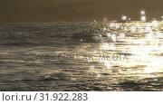 Купить «Beach shore with short waves», видеоролик № 31922283, снято 26 марта 2019 г. (c) Wavebreak Media / Фотобанк Лори