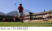 Купить «Rugby player kicking the ball from the kicking tee in the stadium 4k», видеоролик № 31936027, снято 16 января 2019 г. (c) Wavebreak Media / Фотобанк Лори