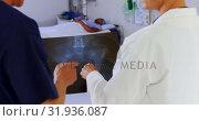 Купить «doctor and nurse discussing over x-ray report 4k», видеоролик № 31936087, снято 26 января 2019 г. (c) Wavebreak Media / Фотобанк Лори