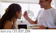 Купить «Young man feeding his woman in the kitchen at home 4k», видеоролик № 31937299, снято 17 января 2019 г. (c) Wavebreak Media / Фотобанк Лори