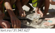 Купить «Volunteers cleaning beach on a sunny day 4k», видеоролик № 31947627, снято 14 февраля 2019 г. (c) Wavebreak Media / Фотобанк Лори