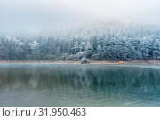 Купить «Lake in winter and forest covered with ice frost, beautiful season landscape», фото № 31950463, снято 10 апреля 2020 г. (c) easy Fotostock / Фотобанк Лори