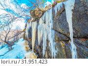 Купить «Long icicles dangle from the rock. Bottom view.», фото № 31951423, снято 23 апреля 2019 г. (c) Акиньшин Владимир / Фотобанк Лори