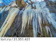 Купить «Long icicles dangle from the rock. Bottom view.», фото № 31951431, снято 23 апреля 2019 г. (c) Акиньшин Владимир / Фотобанк Лори