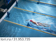 Купить «Swimmer in a pool», фото № 31953735, снято 24 марта 2019 г. (c) Wavebreak Media / Фотобанк Лори