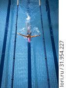 Купить «Swimmer in a pool», фото № 31954227, снято 24 марта 2019 г. (c) Wavebreak Media / Фотобанк Лори