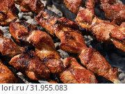 Купить «Шашлыки жарятся на мангале», фото № 31955083, снято 14 июля 2019 г. (c) А. А. Пирагис / Фотобанк Лори