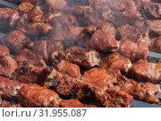 Купить «Шашлыки из мяса свиньи жарятся на мангале», фото № 31955087, снято 14 июля 2019 г. (c) А. А. Пирагис / Фотобанк Лори