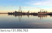 Купить «Военные корабли Балтийского флота в Средней гавани в июньские сумерки. Кронштадт, Россия», видеоролик № 31956763, снято 3 июня 2019 г. (c) Виктор Карасев / Фотобанк Лори