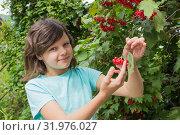 Купить «Девочка и спелые ягоды калины. Август», фото № 31976027, снято 5 августа 2019 г. (c) Александр Романов / Фотобанк Лори