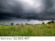 Купить «The Summer countryside landscape with a thundercloud», фото № 32003407, снято 8 августа 2019 г. (c) Володина Ольга / Фотобанк Лори