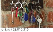 Купить «Hand hangs on a hook a bunch of keys», видеоролик № 32010315, снято 30 июля 2019 г. (c) Ekaterina Demidova / Фотобанк Лори