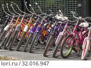 Купить «Велосипеды на парковке пункта проката в городском парке», фото № 32016947, снято 28 июля 2019 г. (c) Наталья Николаева / Фотобанк Лори