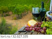 Купить «Red wine, cheese and grapes with green vineyard», фото № 32027335, снято 17 октября 2019 г. (c) Яков Филимонов / Фотобанк Лори