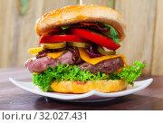 Купить «Tasty double-decker grilled hamburger with beef, tomato, cheese, cucumber», фото № 32027431, снято 24 августа 2019 г. (c) Яков Филимонов / Фотобанк Лори