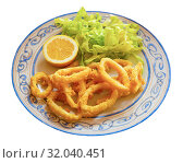 Купить «Crispy squid rings in batter Roman style. Traditional spanish dish», фото № 32040451, снято 24 января 2020 г. (c) Яков Филимонов / Фотобанк Лори