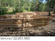 Купить «Изготовление срубов на делянке. Production of log cabins on the forest plot.», фото № 32051983, снято 29 июля 2019 г. (c) Евгений Романов / Фотобанк Лори